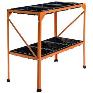 Kweekrek - Oranje
