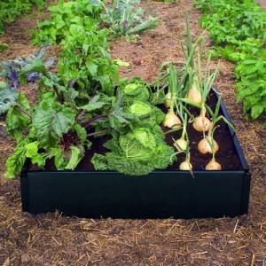 Caréo moestuinbak vierkante meter tuin