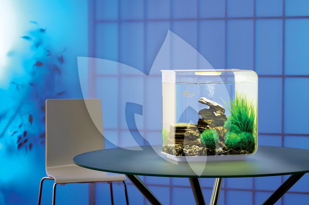 biorb flow aquarium 30 liter led wit. Black Bedroom Furniture Sets. Home Design Ideas