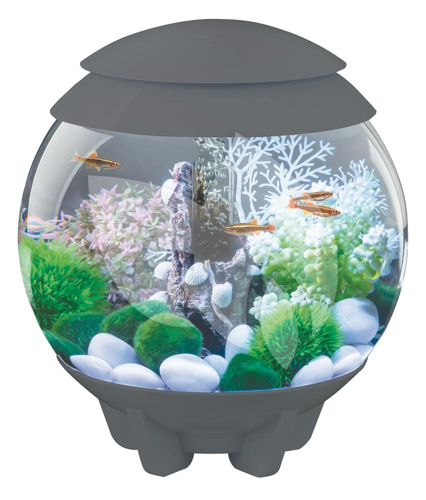 biorb halo aquarium 15 liter mcr grijs. Black Bedroom Furniture Sets. Home Design Ideas