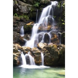 Waterval tuinposter