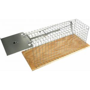Ongediertebestrijding|Rattenval