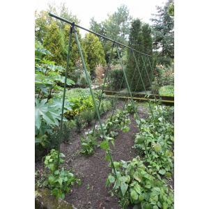 Moestuin|Plantensteunen