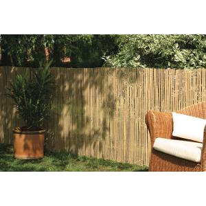 Bamboe afscheiding tuin