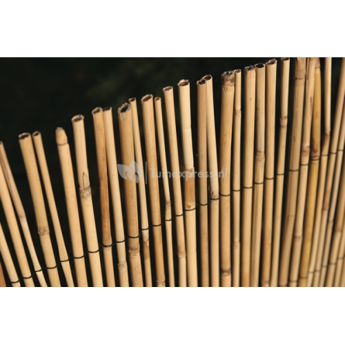 Bamboerietmat Palea