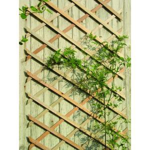 Hardhouten klimrek het ideale hulpmiddel voor al uw clematissen, klimplanten en klimrozen. de hardhouten ...