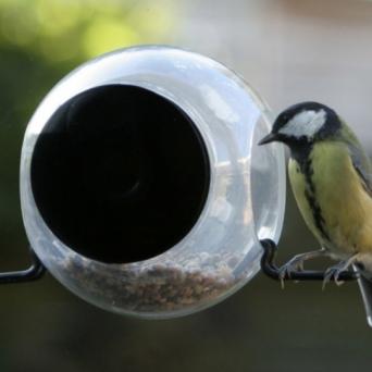 Raamvoederhuisje Bird feeder