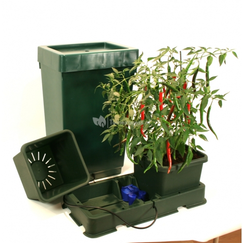 Duo Planter waterregelaar