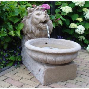 Basel waterornament creëer een prachtige nostalgische hoek in uw tuin met het basel waterornament! dit ...