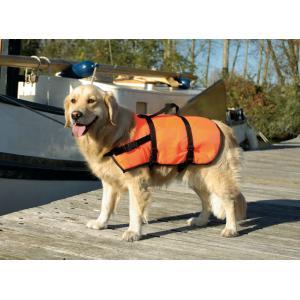 Zwem en veiligheidsvest - M