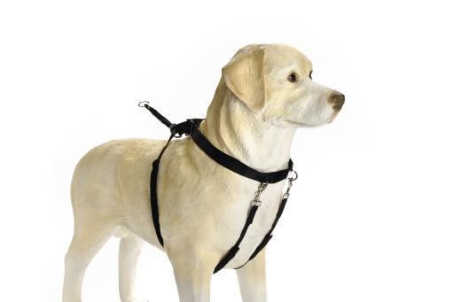 Beeztees Gentle Walker M (Cocker) voor de hond Per stuk