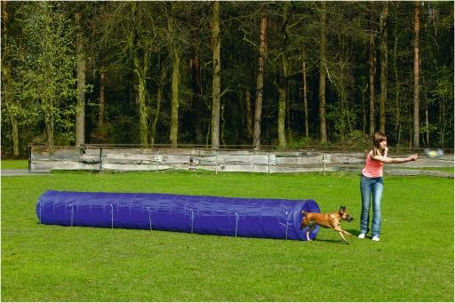 Beeztees agility tunnel - hondenspeelgoed - l - 525x60x60 cm
