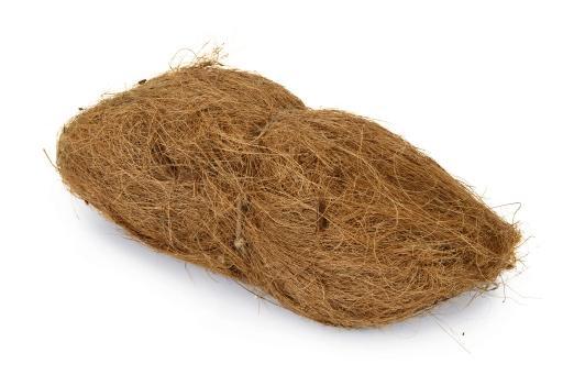 Beeztees nestmateriaal - vogel - kokos 270 gram