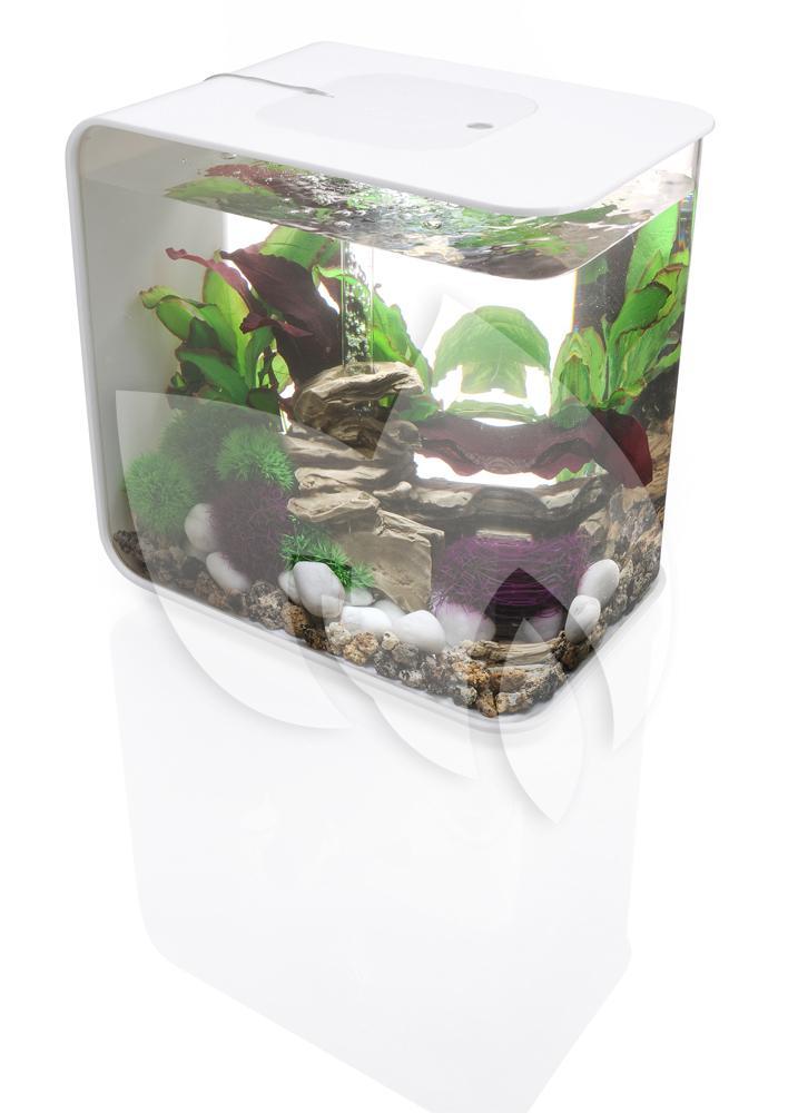 biorb flow aquarium 15 liter led wit. Black Bedroom Furniture Sets. Home Design Ideas