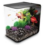 BiOrb Flow aquarium 15 liter LED zwart