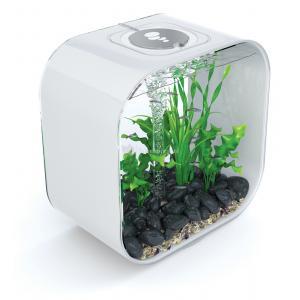 Dagaanbieding - BiOrb Life aquarium 30 liter MCR wit dagelijkse aanbiedingen