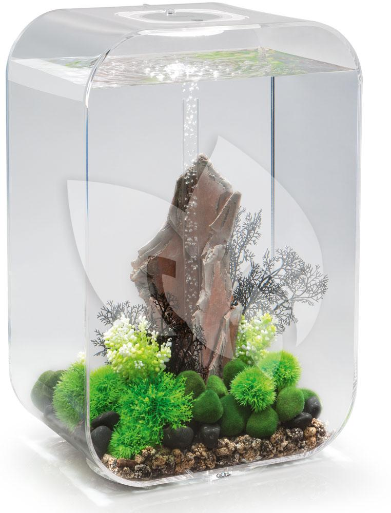 biorb life aquarium 60 liter mcr transparant. Black Bedroom Furniture Sets. Home Design Ideas