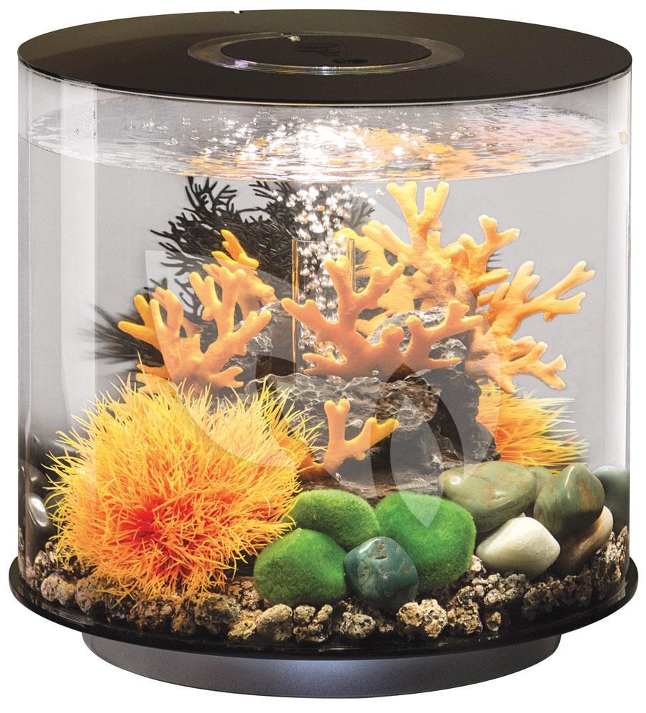 biorb tube aquarium 15 liter led zwart. Black Bedroom Furniture Sets. Home Design Ideas