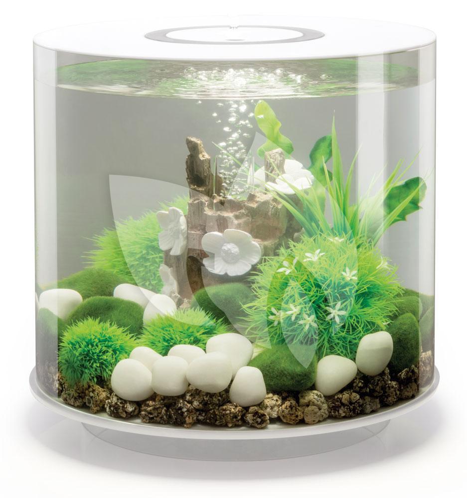 biorb tube aquarium 15 liter mcr wit. Black Bedroom Furniture Sets. Home Design Ideas