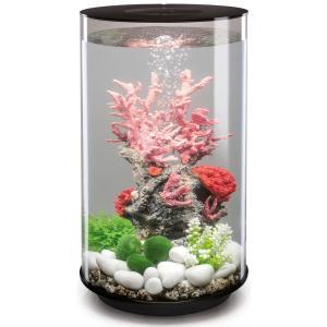 Oase 45960 Aquarium 30 l Met LED-verlichting