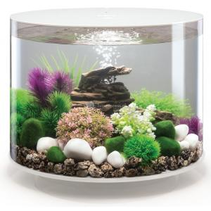 BiOrb Tube aquarium 35 liter LED wit
