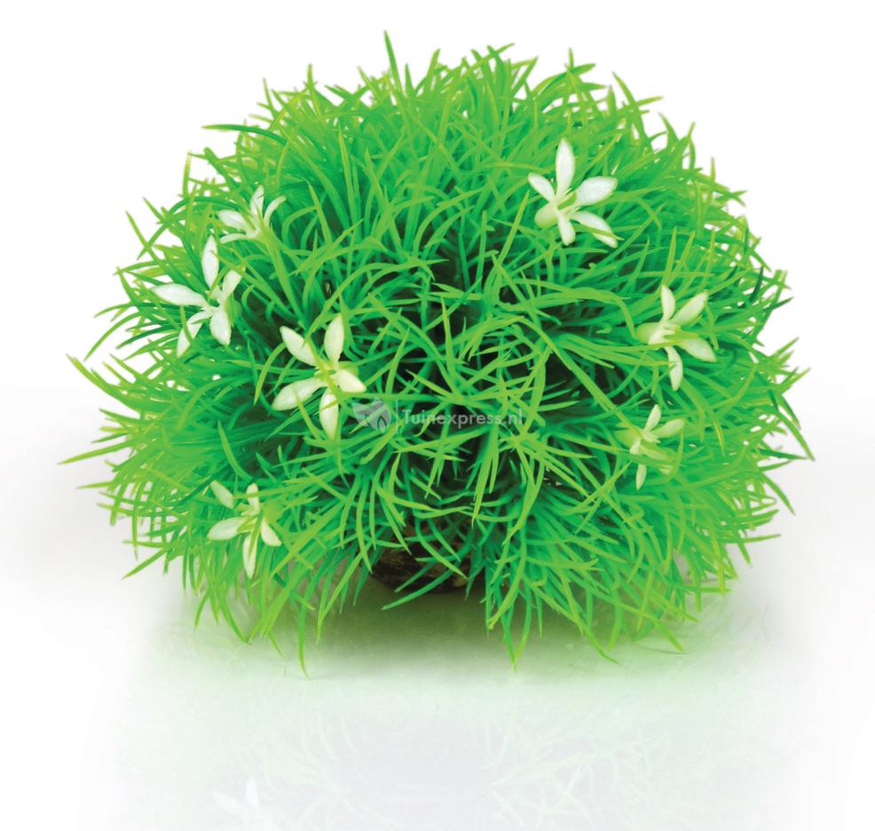 Biorb bloemenbal groen madeliefje aquarium decoratie for Decoratie aquarium