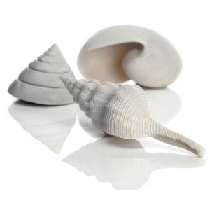 BiOrb schelp set 3 wit aquarium decoratie