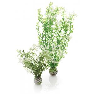 Decoratie Aquarium Easy Plant Winter Flowers- Groen M Biorb