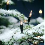 Mini lichtsnoer pizello met 40 heldere lampjes