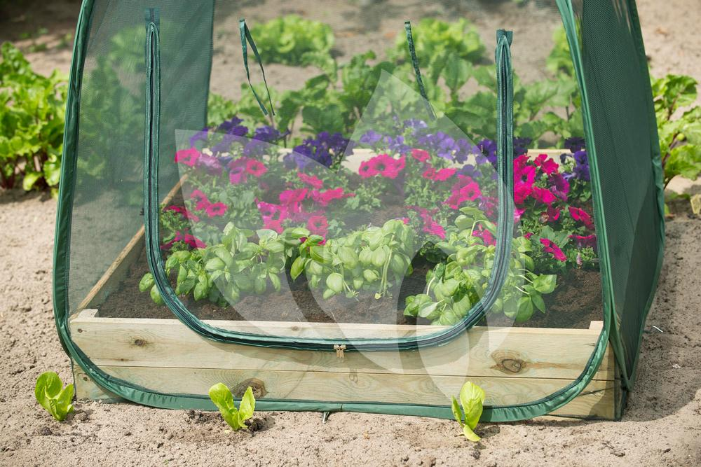Vierkante Meter Tuin : Nature beschermhoes voor vierkantemetertuin anti insectennet