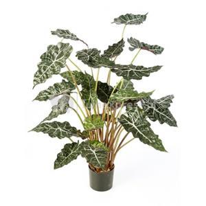 Korting Kunstplant Alocasia polly L