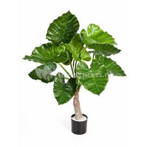 Korting Kunstplant Alocasia calidora S