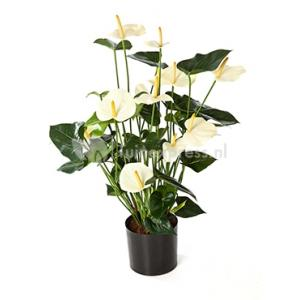 Kunstplant Anthurium cream