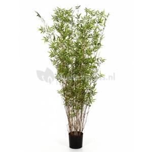 Korting Kunstplant Bamboe oriental M