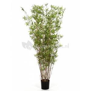 Korting Kunstplant Bamboe oriental L