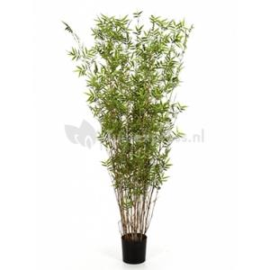 Korting Kunstplant Bamboe oriental XL