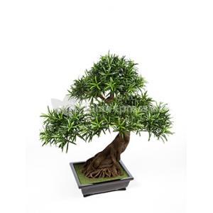 Kunstplant Podocarpus bonsai L