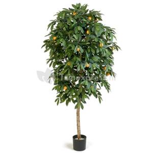 Korting Kunstplant Citrus mandarine M