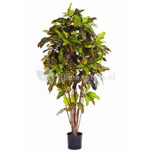 Korting Kunstplant Croton exellent L