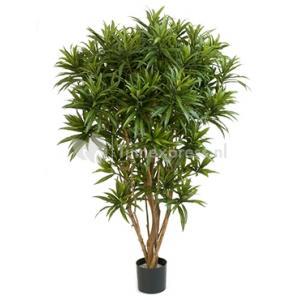 Kunstplant Dracaena reflexa jamaica