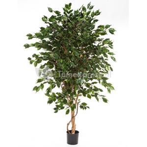 Kunstplant Ficus exotica de luxe M