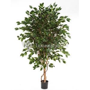 Kunstplant Ficus exotica de luxe L