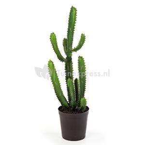 Kunstplant Finger cactus M