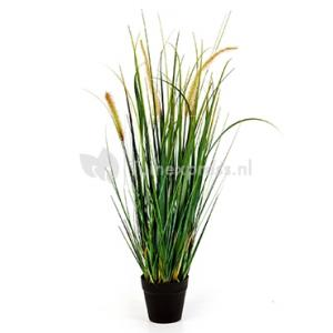Kunstplant Foxtail wild grass M