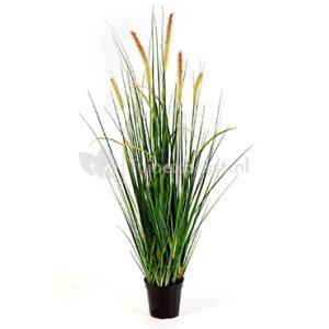 Kunstplant Foxtail wild grass L