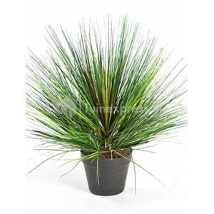 Dagaanbieding - Kunstplant Grass onion L dagelijkse aanbiedingen