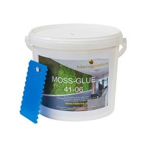 Dagaanbieding - Lijm voor het plakken van mos 5 kg dagelijkse aanbiedingen