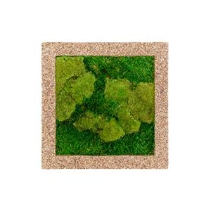 Moswand schilderij naturecast vierkant 50A