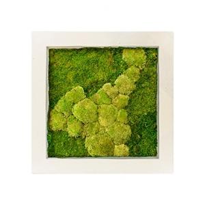 Moswand schilderij polystone vierkant naturel 70A