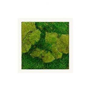 Korting Moswand schilderij metaal stiel vierkant wit mat 50A